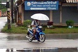 気候がどんどん東南アジア化